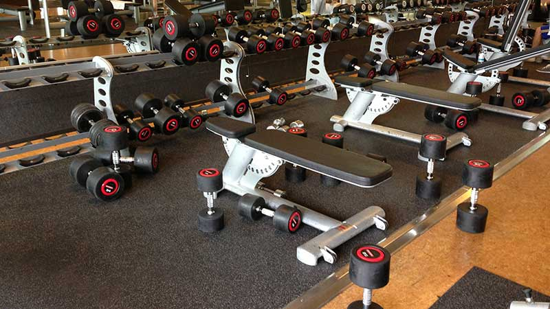 Gym etiquette what everyone should know power plant body